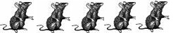 ratting system 5 rats